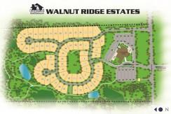 Walnut_Ridge_Lot11_046