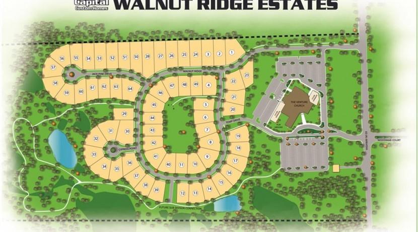 Walnut_Ridge_lot14_031